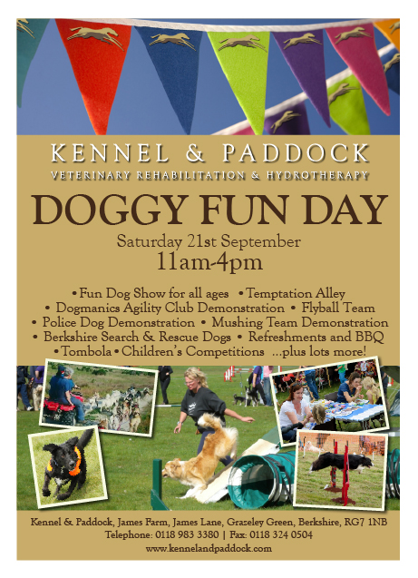 Kennel & Paddock Doggy Fun Day
